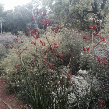 Amenities | Novacare Busselton Village